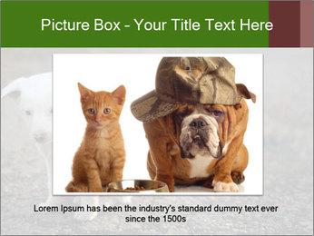 0000081112 PowerPoint Templates - Slide 16