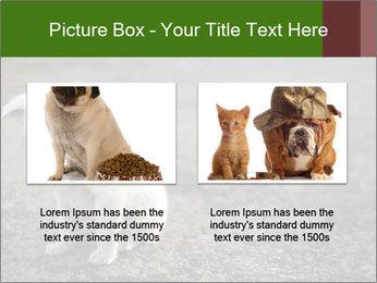 0000081112 PowerPoint Templates - Slide 18