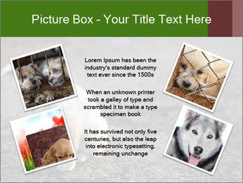0000081112 PowerPoint Templates - Slide 24