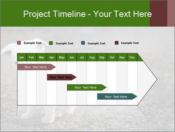 0000081112 PowerPoint Templates - Slide 25