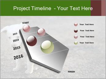 0000081112 PowerPoint Templates - Slide 26