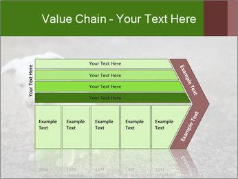 0000081112 PowerPoint Templates - Slide 27