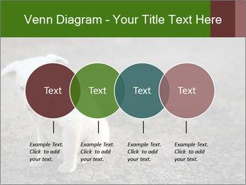 0000081112 PowerPoint Templates - Slide 32