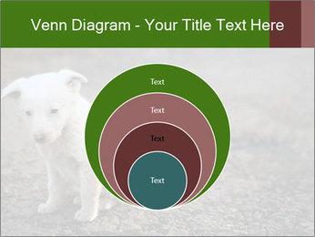 0000081112 PowerPoint Templates - Slide 34