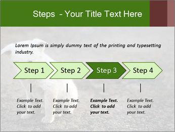 0000081112 PowerPoint Templates - Slide 4