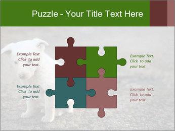0000081112 PowerPoint Templates - Slide 43