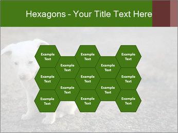 0000081112 PowerPoint Templates - Slide 44