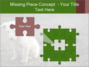 0000081112 PowerPoint Templates - Slide 45