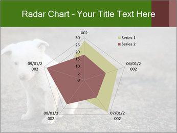 0000081112 PowerPoint Templates - Slide 51