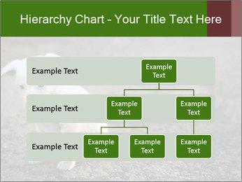 0000081112 PowerPoint Templates - Slide 67