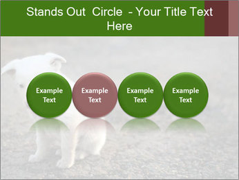 0000081112 PowerPoint Templates - Slide 76