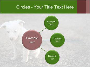 0000081112 PowerPoint Templates - Slide 79