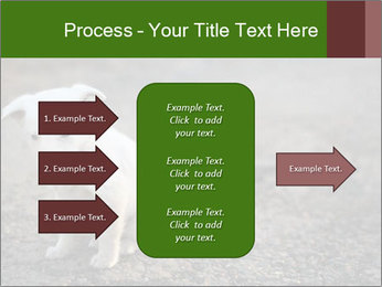 0000081112 PowerPoint Templates - Slide 85