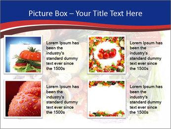 0000081116 PowerPoint Templates - Slide 14