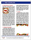0000081116 Word Template - Page 3