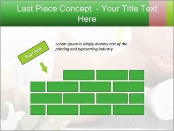 0000081117 PowerPoint Template - Slide 46