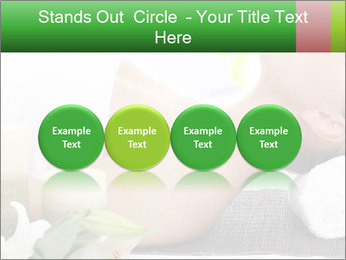0000081117 PowerPoint Template - Slide 76