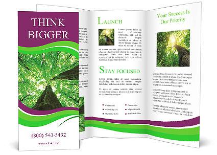 0000081118 Brochure Template