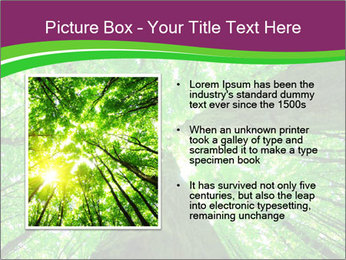 0000081118 PowerPoint Template - Slide 13
