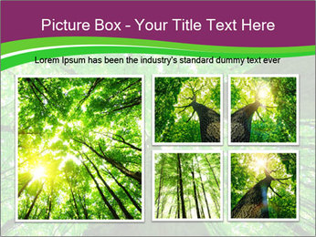 0000081118 PowerPoint Template - Slide 19