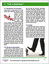 0000081119 Word Template - Page 3