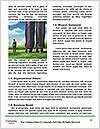 0000081119 Word Template - Page 4
