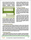 0000081120 Word Template - Page 4