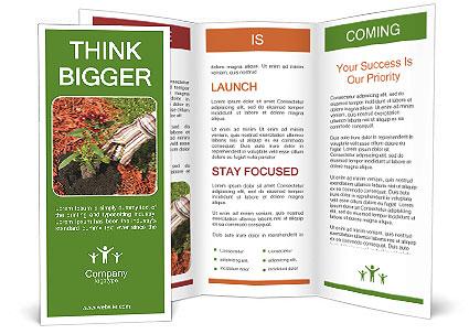 0000081129 Brochure Template