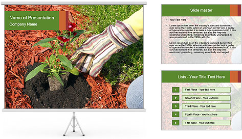 0000081129 PowerPoint Template