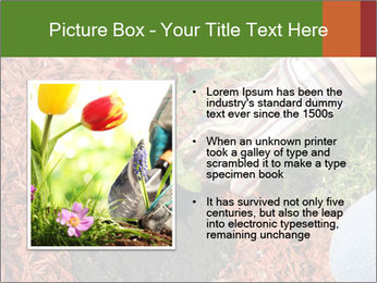 0000081129 PowerPoint Templates - Slide 13