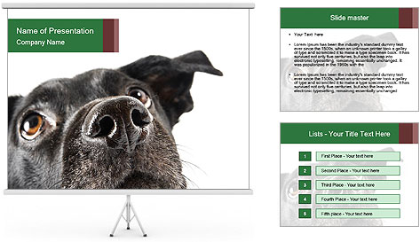 0000081131 PowerPoint Template