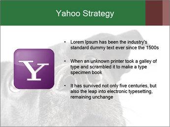 0000081131 PowerPoint Template - Slide 11