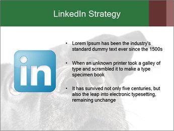 0000081131 PowerPoint Template - Slide 12