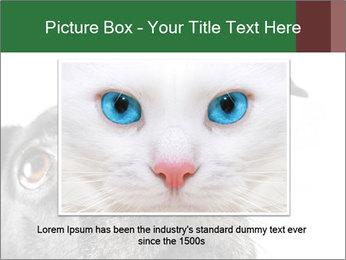 0000081131 PowerPoint Template - Slide 15