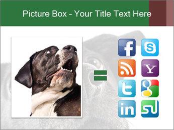 0000081131 PowerPoint Template - Slide 21
