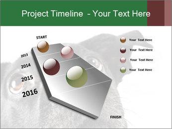 0000081131 PowerPoint Template - Slide 26