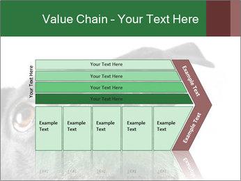 0000081131 PowerPoint Template - Slide 27