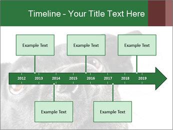 0000081131 PowerPoint Template - Slide 28