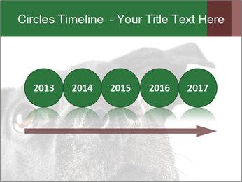 0000081131 PowerPoint Template - Slide 29