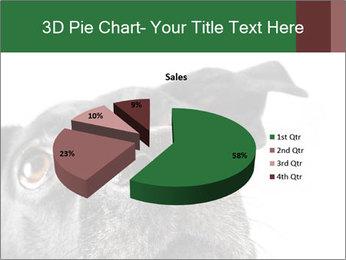 0000081131 PowerPoint Template - Slide 35
