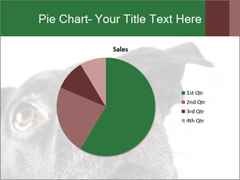 0000081131 PowerPoint Template - Slide 36