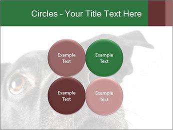 0000081131 PowerPoint Template - Slide 38