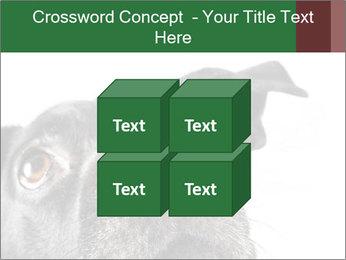 0000081131 PowerPoint Template - Slide 39