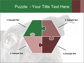 0000081131 PowerPoint Template - Slide 40