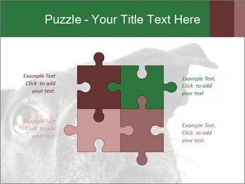 0000081131 PowerPoint Template - Slide 43