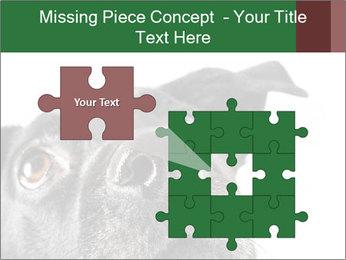 0000081131 PowerPoint Template - Slide 45