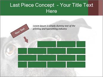 0000081131 PowerPoint Template - Slide 46