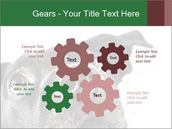 0000081131 PowerPoint Template - Slide 47