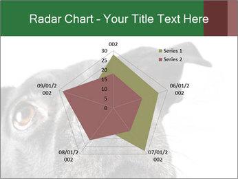 0000081131 PowerPoint Template - Slide 51