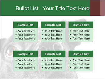 0000081131 PowerPoint Template - Slide 56